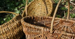 Willow foraging baskets