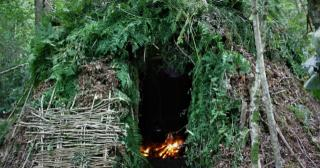 A group shelter made from hazel with leaf and bracken thatch