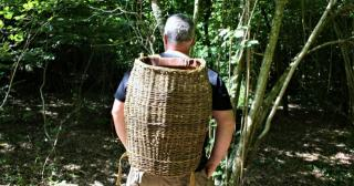 Willow pack basket in use on a woodsy walk