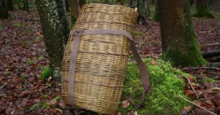 Woven willow pack basket